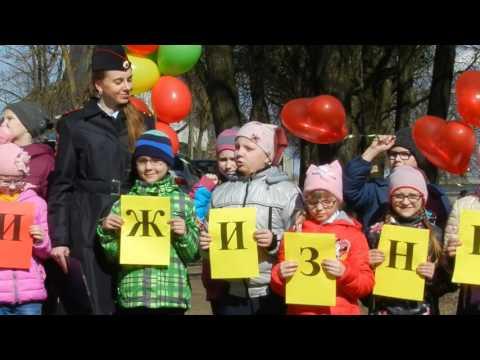 Дети читают стихи про дорожные знаки