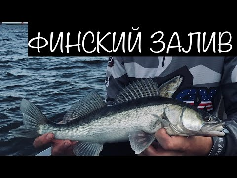 Рыбалка на Финском