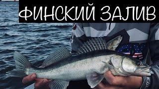 Рыбалка на Финском Заливе. Ловля Судака на Джиг. Осень 2019
