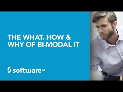 The What, How and Why of Bi-Modal IT