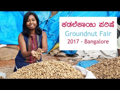 Kadalekayi Parishe 2017 - Groundnut Fair, Bangalore