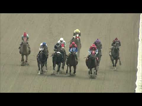 video thumbnail for MONMOUTH PARK 10-24-20 RACE 2