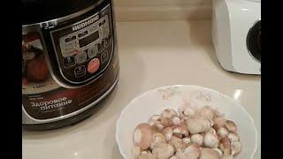 Тушеный картофель с грибами в мультиварке REDMOND RMC M22 Маслята с картошкой