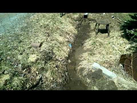 23Mar15 :: Mavis Farmacy Series :: The Swales Are Swell