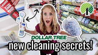 EXTREME $1 DOLLAR TREE CLEANING SECRETS! 😱 *NEW* pro tricks to clean your bathroom FAST!