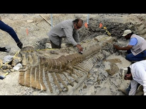 Dinosaur remains found in Mexico