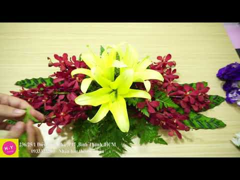 cách cấm hoa lan tại kienthuccuatoi.com
