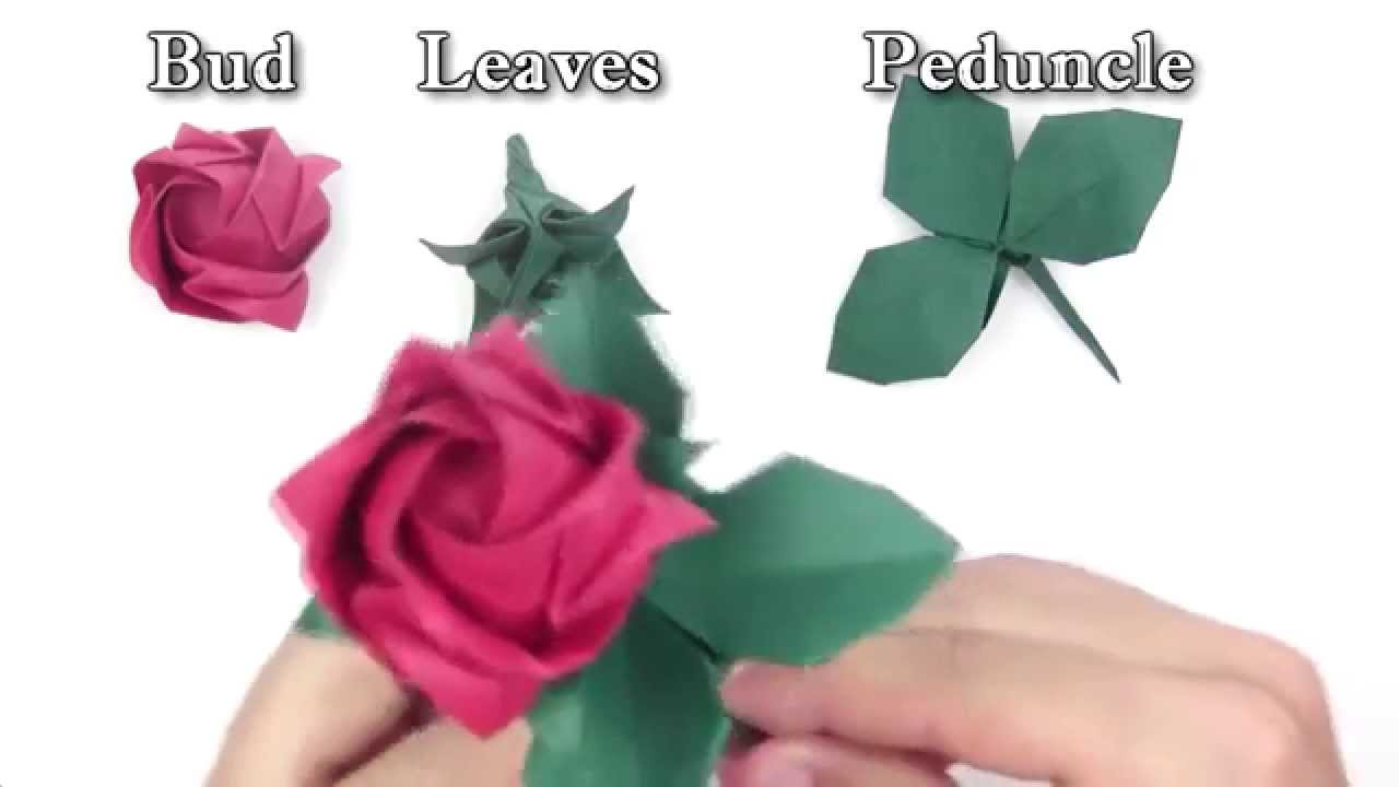 Full Bloom Origami Kawasaki Rose – Origami Tutorials | 720x1280