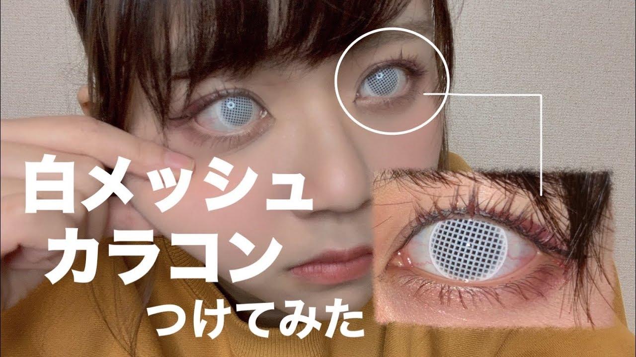 周り 白い が の 黒目