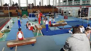 Спортивная гимнастика 3 взрослый разряд(5)