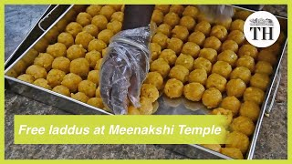 Free laddu distribution at Madurai Meenakshi Temple