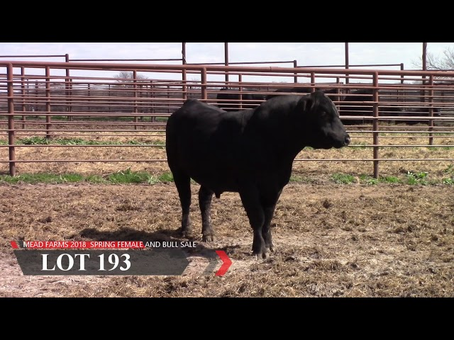 Mead Farms Lot 193