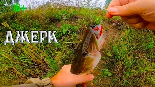 Рыбалка на щуку на самый уловистый джерк с берега на малых реках