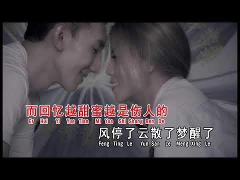 感觉不会再爱了(MV) ~ 依文