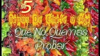 5 Tipos De Chile o Ají Que te quemarian   Maninthejail18
