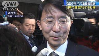 23日失効のGSOMIA 日韓外務省局長級協議は平行線(19/11/15)