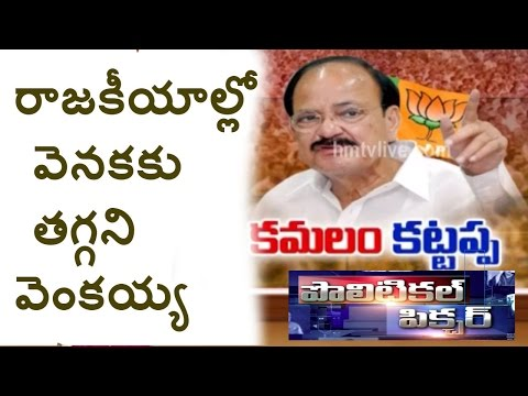 Special Focus On Union Minister Venkaiah Naidu Strategy In Politics | Political Picture | HMTV