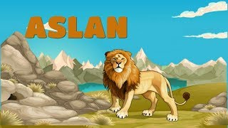 Türkçe izle - Eğitici çizgi film-Çocuklar için-Vahşi hayvanları tanıyalım-1