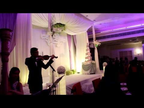 cinderella-waltz---harp-&-violin-duet