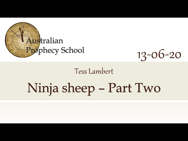 Ninja Sheep - Part Two; Tess Lambert - 13.06.2020