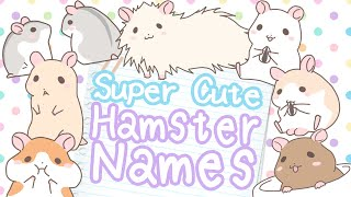 🐹 Hamster Name Ideas for Every Kind of Hamster 🐹 (Over 300 names!)