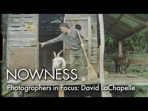 Photographers in Focus: David LaChapelle