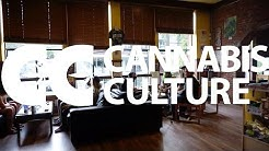 Cannabis Culture Vancouver: Beatty Street & West Hastings Street