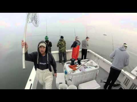 Chunking Striped Bass Delaware Bay 12/13/15