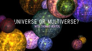 Universe or Multiverse? With Thomas Hertog