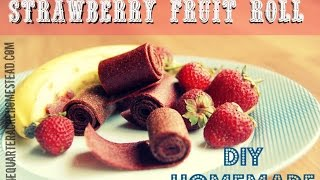 How to Make Strawberry Fruit Leather (Healthy Kid Snacks) Thumbnail