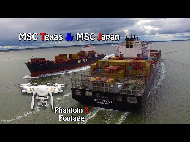 MSC Texas & MSC Japan