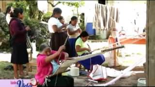Vuelve a la Vida - Artesanos de Mixtla de Altamirano y Tequila
