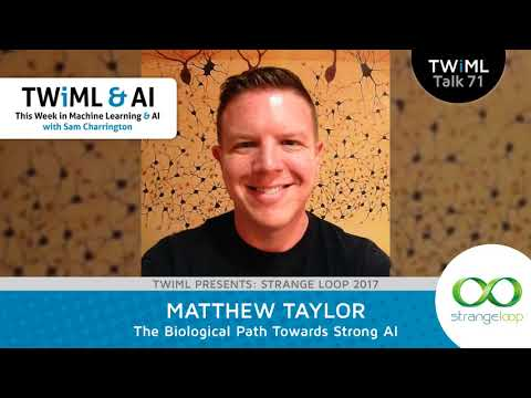 Matthew Taylor Interview - The Biological Path Towards Strong AI