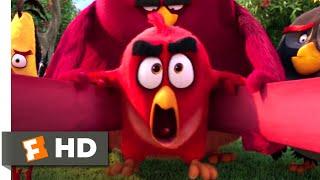 The Angry Birds Movie - Ready, Aim, Fire! Scene | Fandango Family