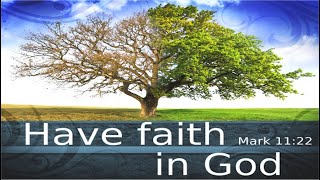 Have faith in God - Mark 11:22