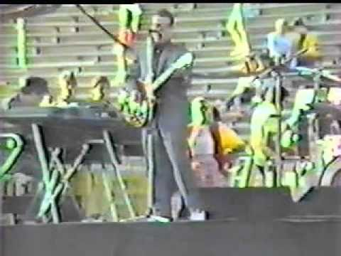 Elvis Costello - Shabby Doll 1982 mp3