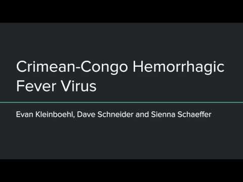 CCHF Presentation video