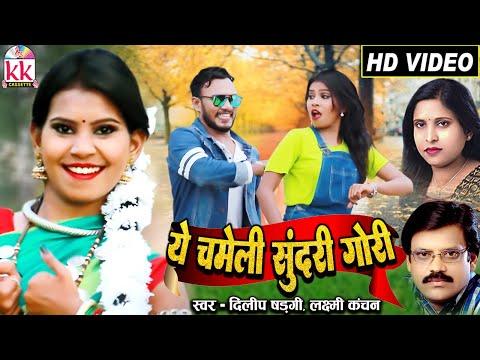 Dilip Shadangi   Laxmi Kanchan   A Chameli Sundar Gori   Chinu Dhiwar   Nidhi Khurana   Cg song  AVM