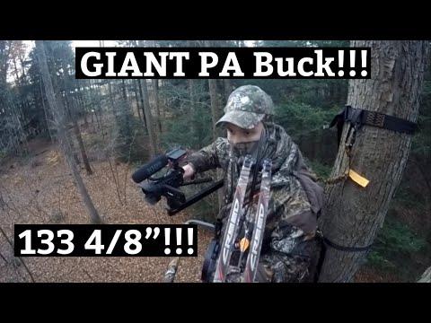 "GIANT 130""+ Public Land PA Archery Buck - Self-Filmed - Ridge Raised Outdoors"