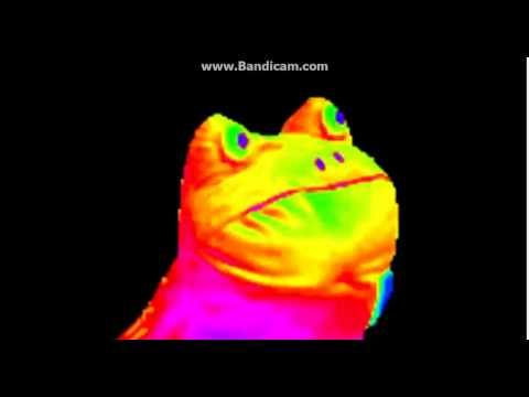 hqdefault rainbow frog mp4 youtube