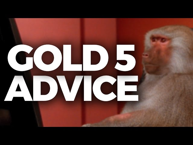GOLD 5 PLAYER GIVES ADVICE TO IWDOMINATE