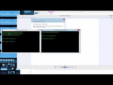 Making a batch file to remotely help someone out
