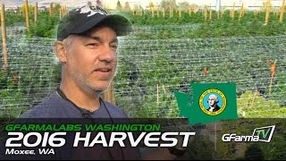 GFarmaLabs Washington Harvest 2016