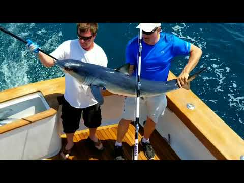 TUNA, MAKO, TILES! Offshore Fishing Virginia Beach W Matador Charters- 5/12/18