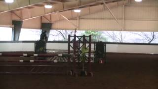 Portugal - 1st Place 1.0m Jumpers - Triangle Farms - Raleigh, NC