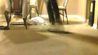 Nollie Shuvit on Carpet