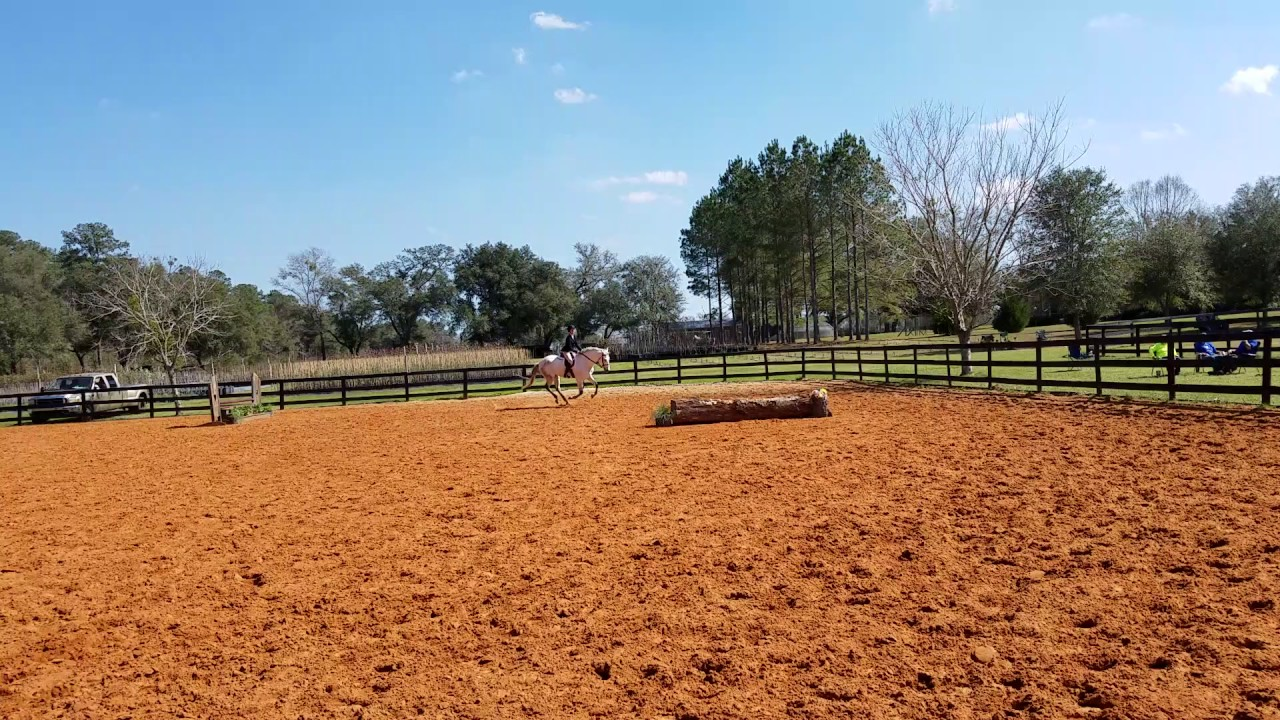 Equitation over fences
