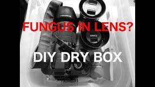 Protecting camera and lens from fungus