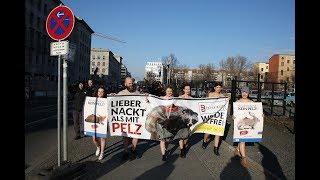 """""""Lieber nackt als mit Pelz"""" – Tierrechtler demonstrieren nackt zum Start der Fashion Week in Berlin"""