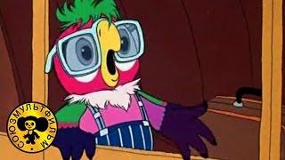 Попугай Кеша - Возвращение блудного попугая 3